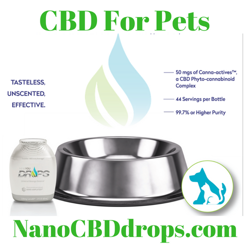 Appropriate doses of DROPS for PETS are safe and beneficial for cats, dogs, birds, rabbits, horses, reptiles and more. Of course, you should always check with a veterinarian if you have any questions or concerns.